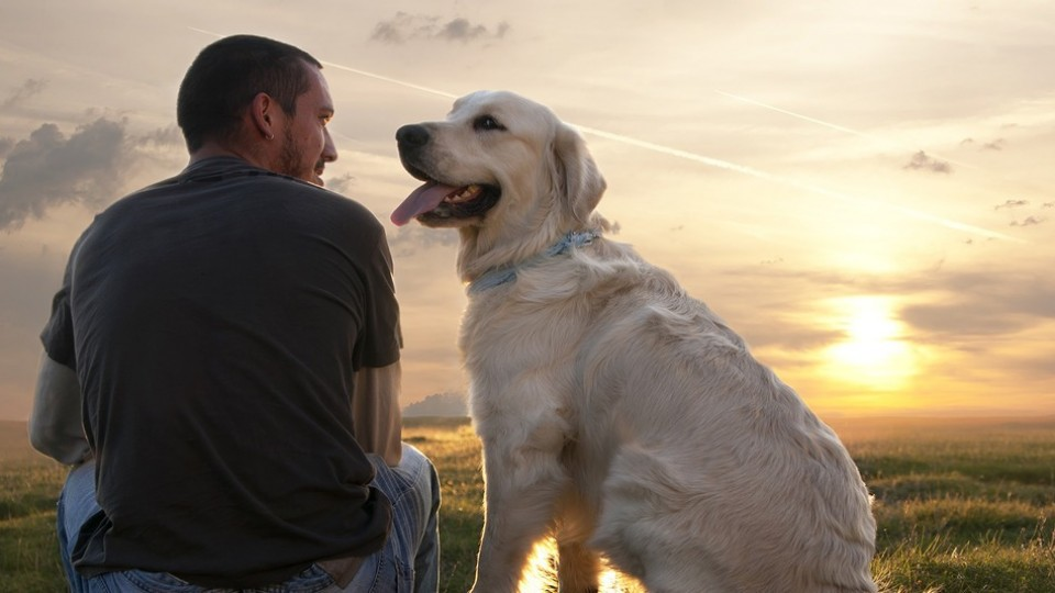 the reasons why dogs are mans best friends Ten reasons dogs really are our best friends there is a reason that dogs are referred to as man's best friend when you have a dog as part of your.